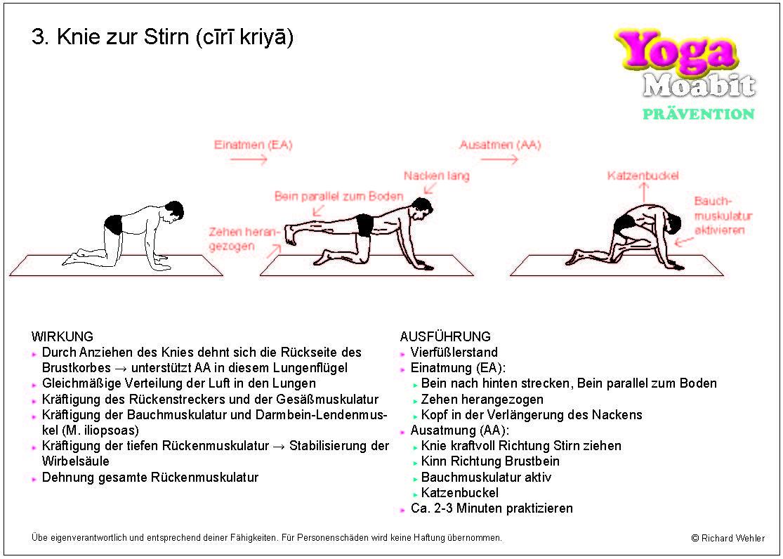 Großartig Karte Von Rückenmuskulatur Bilder - Anatomie Ideen ...